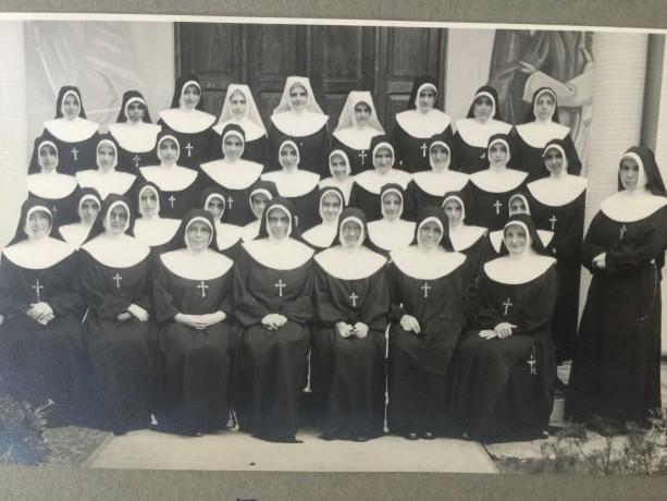 A semente caiu na terra: primeiros grupos de irmãs Brasileiras