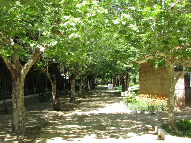 Parques das Águas - Caxambu