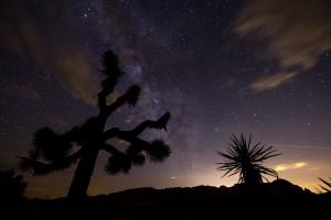 Milky Way at night in Joshua Tree National Park.