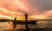 Silhouette Fisherman Fishing by using Net on the boat in morning in Thailand, Nature and culture concept