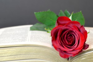 Mother'€s Day card with red rose on the book
