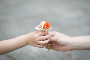 Parents hands handing poppy flowers